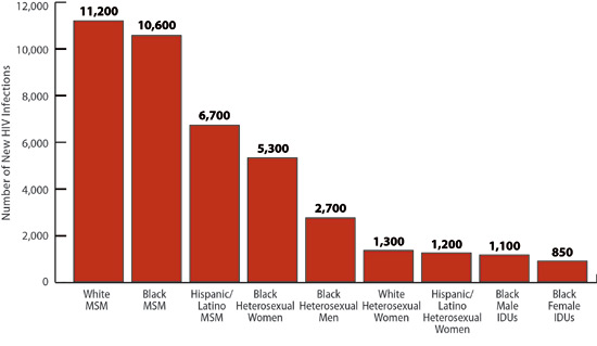 journal gay lesbian studies